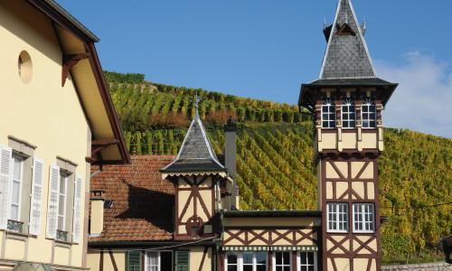 Digitalt vinkurs med Christer Berens: En reise til Alsace